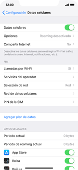 Configurar el equipo para navegar en modo de red LTE - Apple iPhone XR - Passo 3