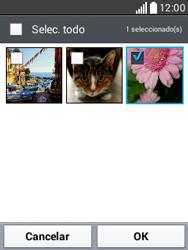 Envía fotos, videos y audio por mensaje de texto - LG L20 - Passo 18