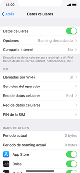 Desactiva tu conexión de datos - Apple iPhone XS - Passo 3