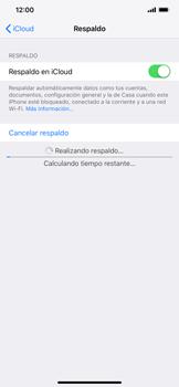 Realiza una copia de seguridad con tu cuenta - Apple iPhone XR - Passo 13