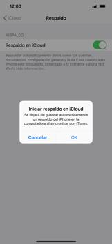 Realiza una copia de seguridad con tu cuenta - Apple iPhone XR - Passo 11