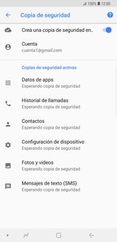 Realiza una copia de seguridad con tu cuenta - Samsung Galaxy Note 9 - Passo 12
