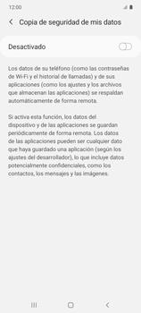 Realiza una copia de seguridad con tu cuenta - Samsung Galaxy S10 Lite - Passo 7