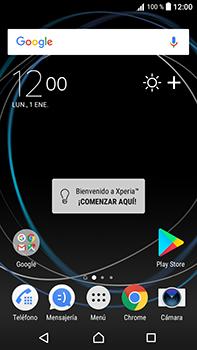 Realiza una copia de seguridad de la memoria - Sony Xperia L1 - Passo 1
