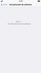 Actualiza el software del equipo - Apple iPhone 7 - Passo 7