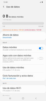 Verificar el uso de datos por apps - Samsung Galaxy S20 - Passo 5