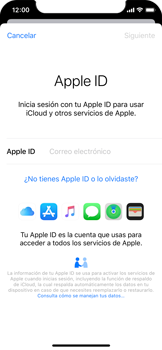 Realiza una copia de seguridad con tu cuenta - Apple iPhone 11 Pro - Passo 4