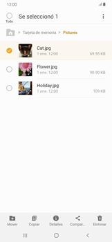 Transferir datos desde la tarjeta SD a tu dispositivo - Samsung Galaxy A30 - Passo 7