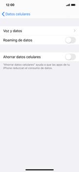 Activa o desactiva el roaming de datos - Apple iPhone 11 Pro - Passo 6
