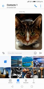 Envía fotos, videos y audio por mensaje de texto - Huawei Mate 10 Lite - Passo 17