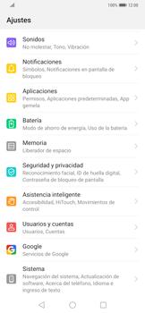 Realiza una copia de seguridad con tu cuenta - Huawei Mate 20 Pro - Passo 3