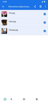 Transferir datos desde tu dispositivo a la tarjeta SD - Motorola Moto G8 Plus (Dual SIM) - Passo 7