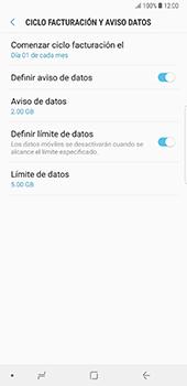 Desactivación límite de datos móviles - Samsung Galaxy Note 8 - Passo 8