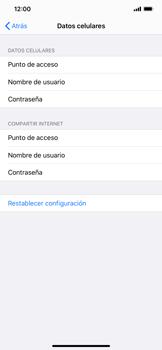 Configurar internet - Apple iPhone 11 - Passo 6