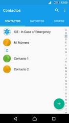 Sincronizar contactos con una cuenta Gmail - Sony Xperia Z5 Compact - Passo 4