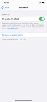 Realiza una copia de seguridad con tu cuenta - Apple iPhone 11 - Passo 16