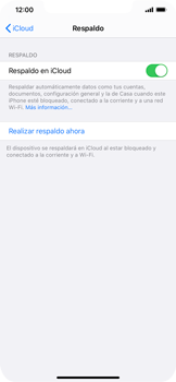 Realiza una copia de seguridad con tu cuenta - Apple iPhone 11 - Passo 14