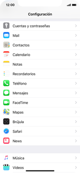 Sincronizar contactos con una cuenta Gmail - Apple iPhone X - Passo 3