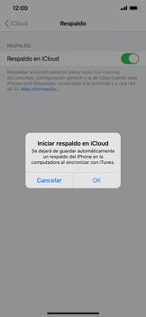 Realiza una copia de seguridad con tu cuenta - Apple iPhone 11 - Passo 13