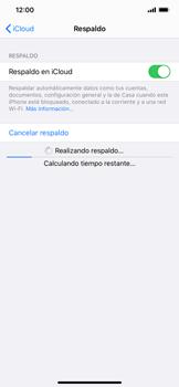 Realiza una copia de seguridad con tu cuenta - Apple iPhone 11 - Passo 15