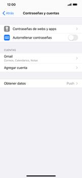 Sincronizar contactos con una cuenta Gmail - Apple iPhone 11 - Passo 4
