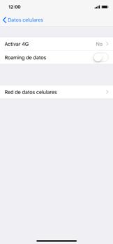 Configurar el equipo para navegar en modo de red LTE - Apple iPhone X - Passo 5