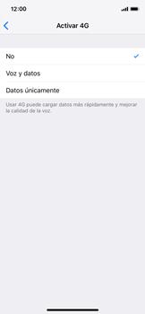 Configurar el equipo para navegar en modo de red LTE - Apple iPhone X - Passo 6