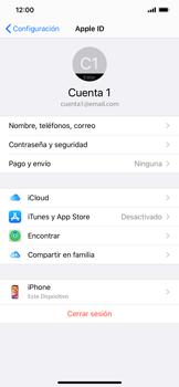 Realiza una copia de seguridad con tu cuenta - Apple iPhone 11 - Passo 10