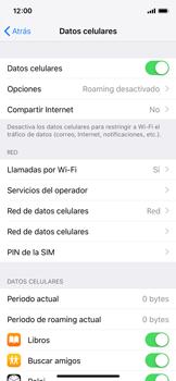 Configurar el equipo para navegar en modo de red LTE - Apple iPhone X - Passo 4