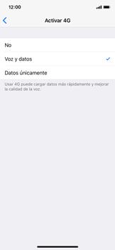 Configurar el equipo para navegar en modo de red LTE - Apple iPhone X - Passo 7
