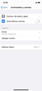 Sincronizar contactos con una cuenta Gmail - Apple iPhone X - Passo 6